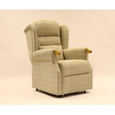 Bradford Rise and Recline Dual Motor Recliner